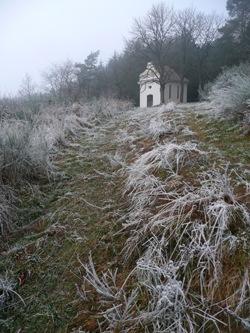 Namrzlá cesta od pole