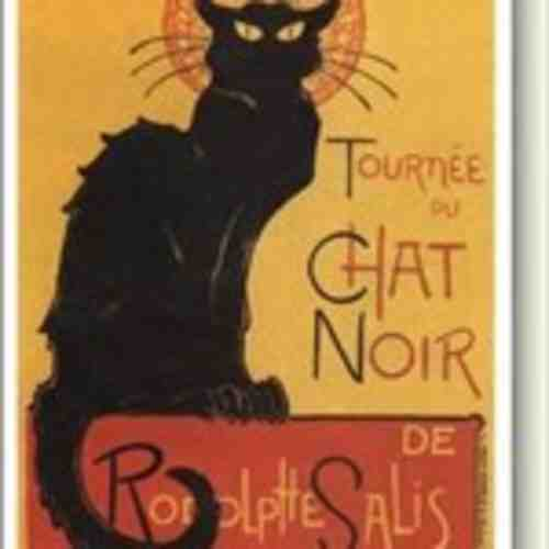 Mr. Black Cat
