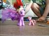 Beachberry with Milas's pony