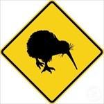 Geo_Kiwi