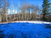 BCP454 9999 Trail - view