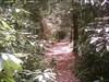 Trail evaporation. log image