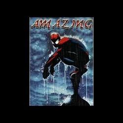 Amazing Spiderman v2[1].0  4