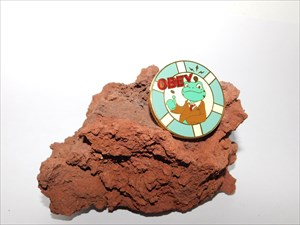Obey Geocoin 2013