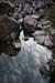 o rio log image