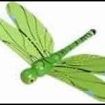 GreenDragonfly
