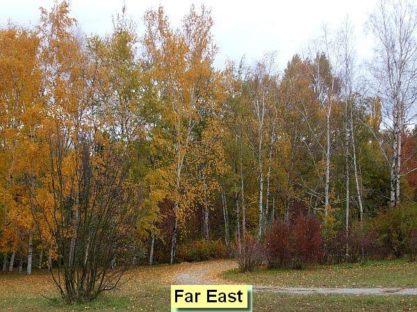 Daleký východ/Far East