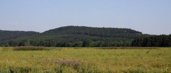 Rybniční vrch od silnice
