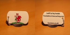 Geotees Custom Tag