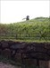 TB69AKK Image téléchargée depuis l'appli Geocaching®