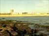 Pau da Maré de Buarcos [Figueira da Foz]-3