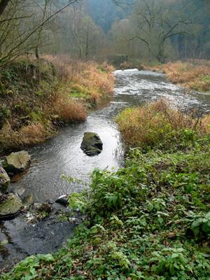 Posledni metry Kralovickeho potoka