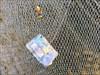 In the fishing net I used the fishingnet on Ameland.