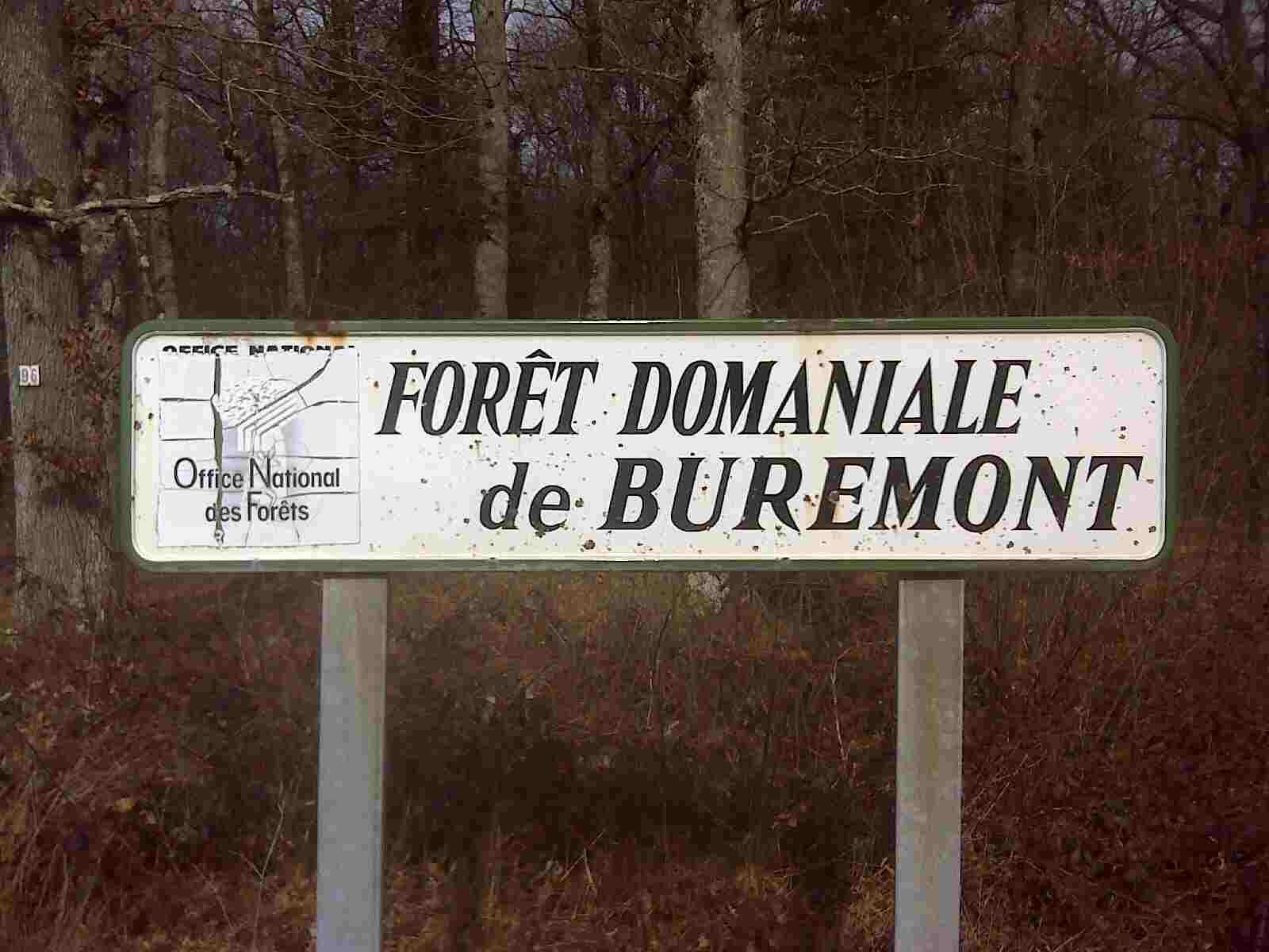 Forêt Domaniale de Buremont