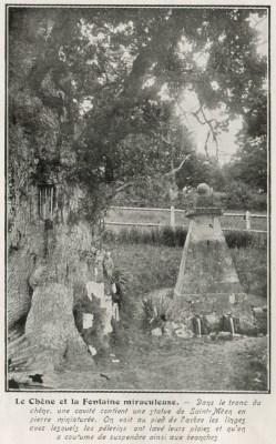 Le Chêne et la Fontaine miraculeuse