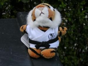Judo Tiger