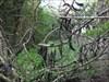 Portinho da Arrábida - Da Capela ao Poço 15 log image