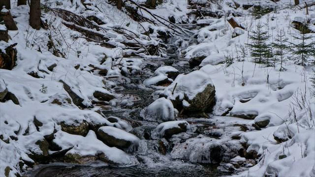 Zimni Stredni Opava