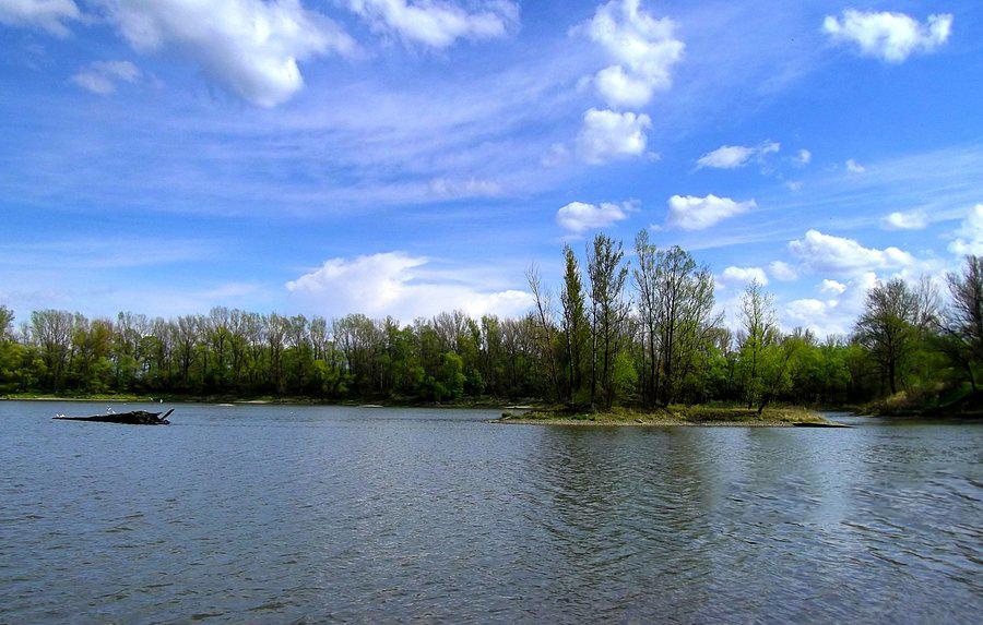Ostrov na Mžikoveckém rybníku