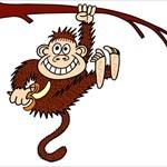 monkeybusiness23