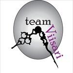team Viisari