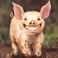 Das Grinseschwein