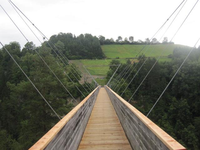 Benni-Raich-Brücke2