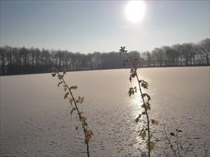 Der Weddelbrooker See im Winter