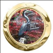 avatar de Heron57