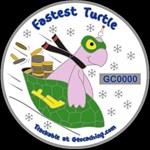 Fastest Turtle