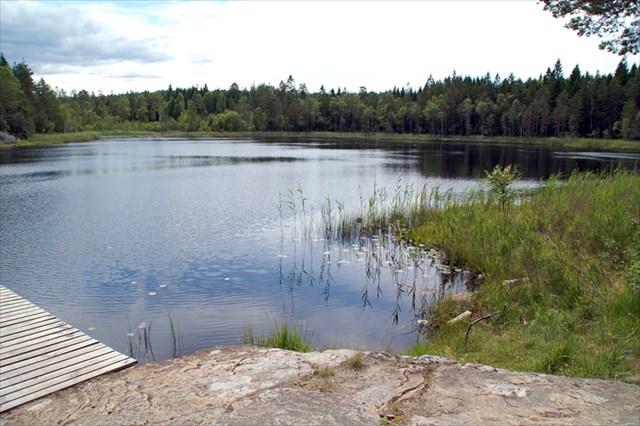 Nordre Murttjern_sommer