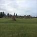Stonehenge in YYC