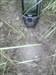 BCP298 - Sundre (muddy) Closeup