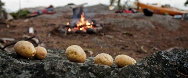 Peka krompirja