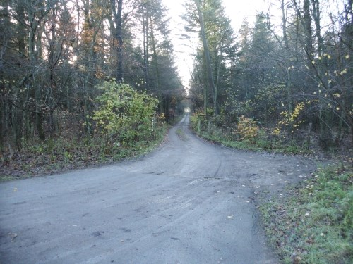 Eingang zum Forst