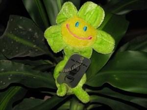 Greenflowertugal