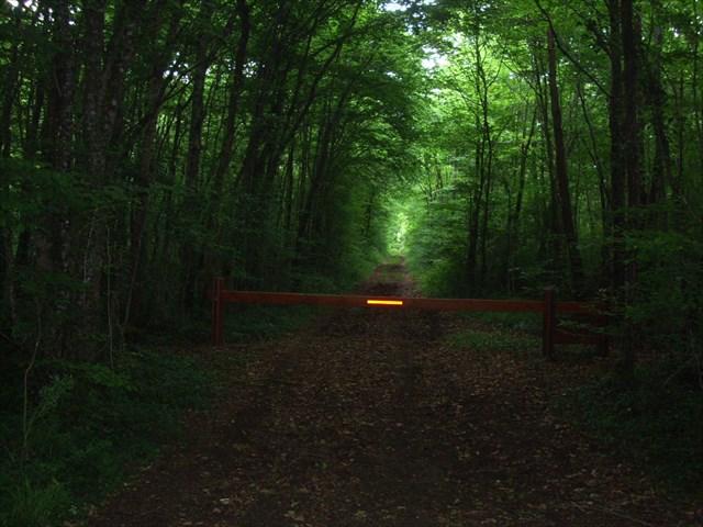Entrée du bois