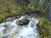 Baril Creek