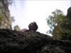 PA050047 log image