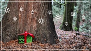Holiday Ammo Can Tag