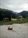 Stuart little a 1800 mètre d'altitude Le voila en montagne, à flaine en Haute Savoie non loin du mont Blanc..