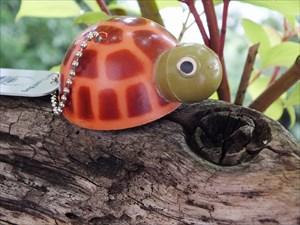 *theo turtle*
