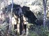 Casa dos mineiros I log image