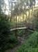 A ponte de Sherwood log image
