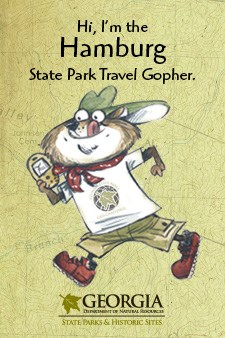 gopher_page_graphic22