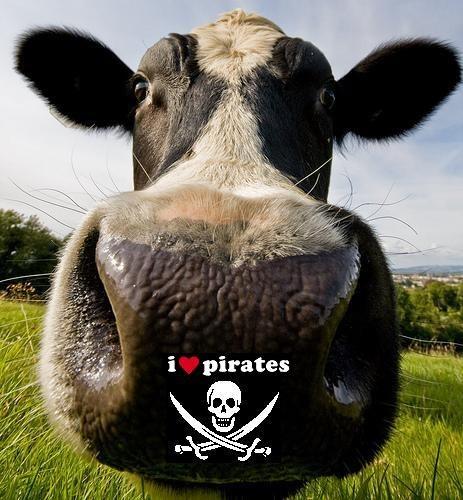 avatar de les vaches pirates