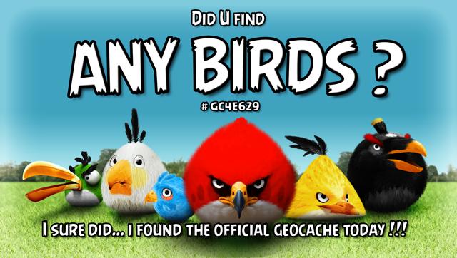 "I found ""ANY BIRDS?"" (banner)"
