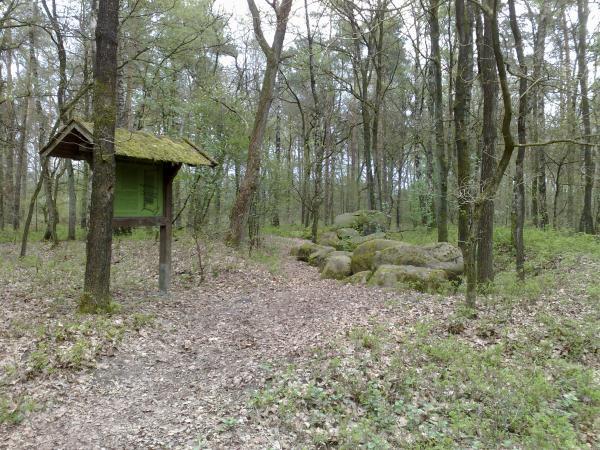 Großsteingrab Freren