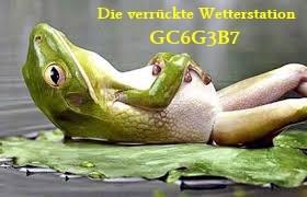 Verrückte Wetterstation-Pfalz