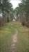 TB55NEP Image téléchargée depuis l'appli Geocaching®